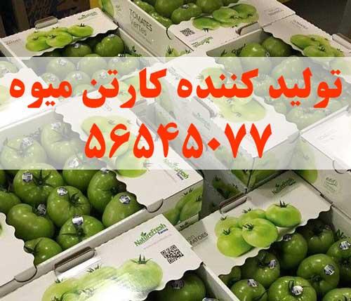 تولید کننده کارتن میوه