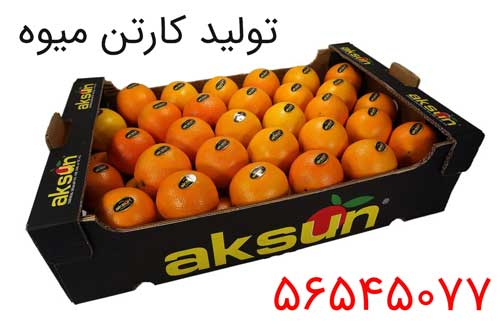 میوه کارتن