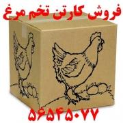 کارتن تخم مرغ